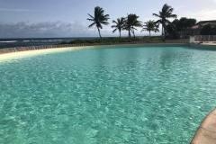 liner-para-piscina-natural