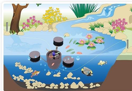 skimmer flotante para estanque