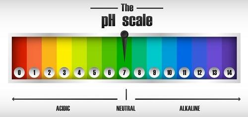 escala de valores ph