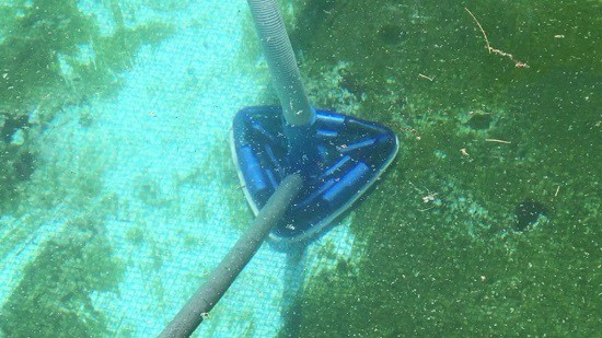 prevenir algas en piscina con clorador salino